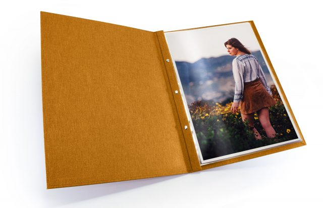 Golden Tan Cloth Screwpost Portfolio - Inner View
